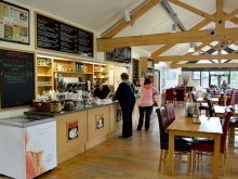 The spacious Cafe Ambio is open all year round